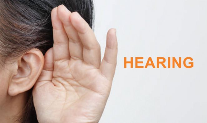 ALL HEARING LOSS PRODUCTS